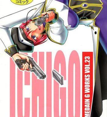 semedain g works vol 23 ichigo cover